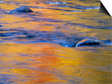Autumn Reflections on Little White River, Elliot Lake, Ontario, Canada Posters by Don Johnston