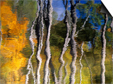 Autumn Reflections in Kilbear Provincial Park, Ontario, Canada Poster by Don Johnston