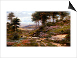 Through the Heather, Dunkeld, Scotland, United Kingdom Print by George Vicat Cole