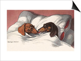 Mariage d'Amour with Two Dogs in Bed Prints by Alexandra Day