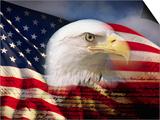 Bald Eagle Head and American Flag Art by Joseph Sohm
