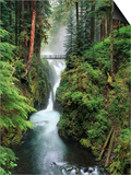 Sol Duc Falls Cascading Through Rainforest Posters by Mark Karrass