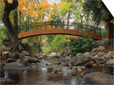 Footbridge over Stream Poster by Robert Glusic