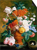 A Vase of Rich Summer Flowers Láminas por Huysum, Jan van
