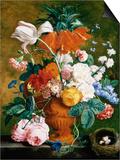 A Vase of Rich Summer Flowers Prints by Jan van Huysum