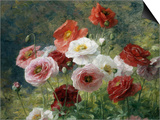 Poppies Prints by Louis Marie Lemaire