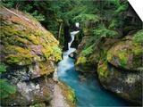 Avalanche Creek Prints by James Randklev