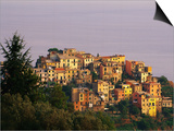 Village of Corniglia on the Italian Riviera Print by Ron Watts