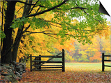 Fall Foliage Surrounds an Open Gate Print by Kathleen Brown