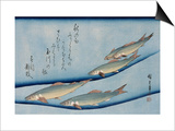 Rivertrout, from the Fish Series Art by Ando Hiroshige