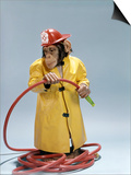 1960s Funny Chimpanzee in Fireman Raincoat and Safety Helmet Holding Red Hose Prints
