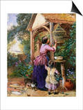 The Bird Cage Posters by Myles Birket Foster