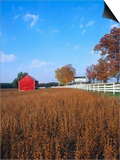 Farm in Autumn Posters by Bruce Burkhardt