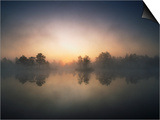 Morning Mist and Sunrise along Wetlands Plakater af Hans Strand
