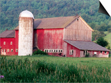 Older Barn With Silo in Lush Greenery Prints by Peter Finger