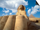 Base of the Great Sphinx Prints by Jim Zuckerman