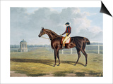 Aquatint by Thomas Sutherland After St. Patrick, Winner 1820 Art by John Frederick Herring I