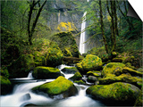 Stream Flowing over Mossy Rocks Prints by Craig Tuttle