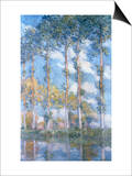 Poplars (1881) Posters by Claude Monet