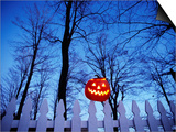 Lit Jack o'-Lantern Perched on Picket Fence Poster by Ralph Morsch