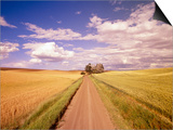 Dirt Road Stretching Through Fields Prints by Craig Tuttle