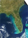 Florida Peninsula Print