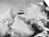 Ernest Shackleton's Ship Endurance Trapped in Ice Prints by  Bettmann