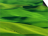 Palouse Hills Prints by Darrell Gulin