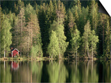 Sauna House at Edge of Forested Lake Prints by Layne Kennedy