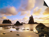 Sea Stacks Off Second Beach Poster by Ron Watts