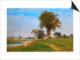 Old Elm at Medfield Prints by George Inness