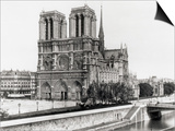 Notre Dame Cathedral Prints by  Bettmann