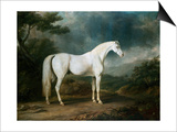 White Horse in a Wooded Landscape Prints by Sawrey Gilpin