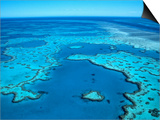 Aerial of the Great Barrier Reef Print by Mark Karrass