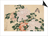 Pink and Red Peonies Blown to the Left in a Breeze and a Butterfly Prints by  Hokusai