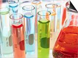 Test Tubes of Colored Liquid Poster von Mark Karrass