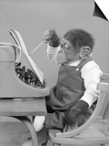 1950s Chimp in Overalls Sitting in Chair at Typewriter with Pencil and Steno Pad Prints