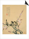 Plum Blossoms and Sparrows Prints by Zhou Xianji