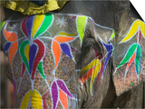 Elephant Decorated with Colorful Painting, Jaipur, Rajasthan, India Posters by Keren Su