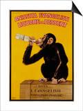 Anisetta Evangelisti Liquore Da Dessert Poster Posters by Carlo Biscaretti Di Ruffia