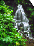 Fairy Falls Tumbling Down Basalt Rocks, Columbia River Gorge National Scenic Area, Oregon, USA Posters by Steve Terrill