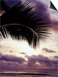 Sunset in Rarotonga Prints by Craig Tuttle