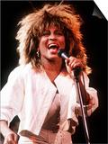 Tina Turner in Concert Birmingham Poster