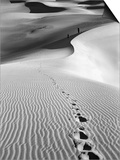 Footprints on Desert Dunes Posters by  Bettmann