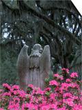 Bonaventure Cemetery, Savannah, Georgia, USA Prints by Joanne Wells