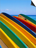 Row of Surfboards at Beach Posters by Randy Faris