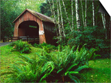 Yachats River Covered Bridge in Siuslaw National Forest, North Fork, Oregon, USA Prints by Steve Terrill