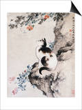 Cat Posters by Shen Quan