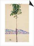 Petit arbre (châtaignier au lac Constance) Affiche par Egon Schiele