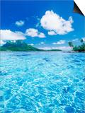 Tropic Waters Art